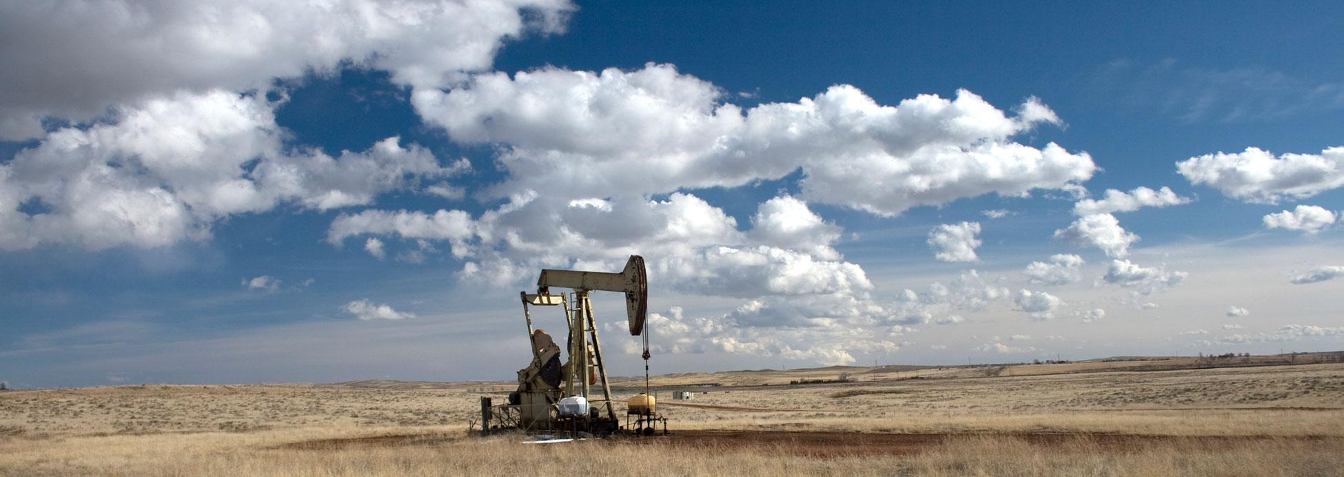 Palmer Petroleum Inc History
